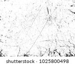 grunge black and white distress ... | Shutterstock .eps vector #1025800498