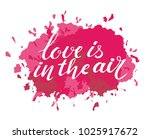 vector valentines day card ... | Shutterstock .eps vector #1025917672