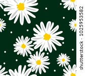 white daisies and white circle... | Shutterstock .eps vector #1025953582