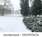 winter park. gloomy weather | Shutterstock . vector #1025955676
