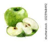 green apple on white background.... | Shutterstock . vector #1025968492