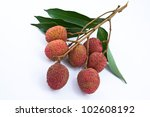 fresh lychees isolated on white | Shutterstock . vector #102608192