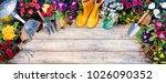 gardening top view composition  ...   Shutterstock . vector #1026090352
