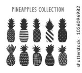 set of monochrome pineapples.... | Shutterstock .eps vector #1026096982