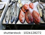 sea food at billingsgate fish... | Shutterstock . vector #1026128272