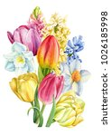 bouquet of spring flowers  a... | Shutterstock . vector #1026185998