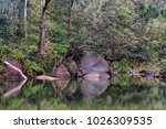 at the babinda boulders ... | Shutterstock . vector #1026309535