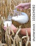 Jug of milk against wheat field - stock photo