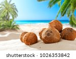 Coconuts On The Beach With A...