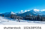cross country skiing and... | Shutterstock . vector #1026389356