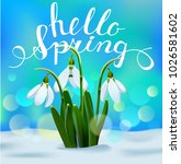 Hello Spring Hand Lettering On...