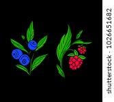 berries vector illustration....   Shutterstock .eps vector #1026651682