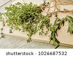 caraway and rosemary on... | Shutterstock . vector #1026687532