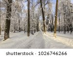 winter park with trees covered...   Shutterstock . vector #1026746266