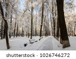 winter park with trees covered...   Shutterstock . vector #1026746272