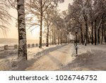 winter park with trees covered... | Shutterstock . vector #1026746752