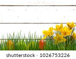 easter decoration in front... | Shutterstock . vector #1026753226