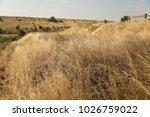 rural area fields india | Shutterstock . vector #1026759022