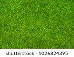 green grass background vignette ... | Shutterstock . vector #1026824395