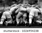 melee during a rugby match | Shutterstock . vector #1026954238