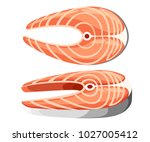 two pieces of fresh salmon... | Shutterstock .eps vector #1027005412
