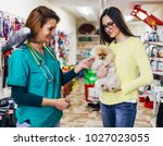 Stock photo pomeranian dog with his owner at pet shop 1027023055