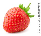 strawberry isolated on white... | Shutterstock . vector #1027027222