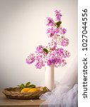 pink flower and fruit with... | Shutterstock . vector #1027044556
