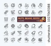 nuts  seeds and beans elements  ... | Shutterstock .eps vector #1027065388