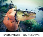 the fisherman is holding a fish | Shutterstock . vector #1027187998