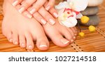 care for beautiful woman legs... | Shutterstock . vector #1027214518