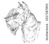 miniature schnauzer dog vector... | Shutterstock .eps vector #1027287892