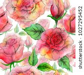 bright watercolor roses. can... | Shutterstock . vector #1027295452