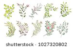 watercolor illustration. ... | Shutterstock . vector #1027320802