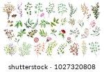 watercolor illustration. ... | Shutterstock . vector #1027320808