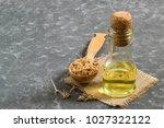 fresh sprouted wheat seeds in... | Shutterstock . vector #1027322122