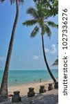 the coconut trees on the beach... | Shutterstock . vector #1027336276