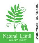lentil logo. isolated lentil on ...   Shutterstock .eps vector #1027336582