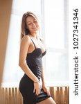 lovely girl sexy in lingerie... | Shutterstock . vector #1027341346
