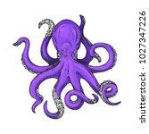 octopus vector illustration.... | Shutterstock .eps vector #1027347226
