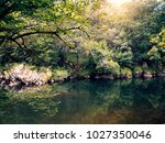 nature background with forest... | Shutterstock . vector #1027350046