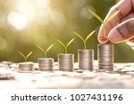 the seedlings are grown on five ...   Shutterstock . vector #1027431196