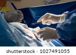 assistant in medical glove... | Shutterstock . vector #1027491055
