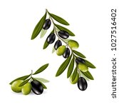 realistic black and green...   Shutterstock .eps vector #1027516402