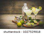 margarita cocktail with lime... | Shutterstock . vector #1027529818