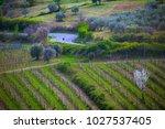 empty road through vineyards in ... | Shutterstock . vector #1027537405