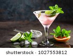 margarita cocktail with salted... | Shutterstock . vector #1027553812