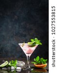 margarita cocktail with salted... | Shutterstock . vector #1027553815