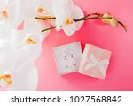 set of silver ring and earrings ... | Shutterstock . vector #1027568842