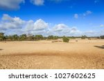 wild bald and  by wind moving... | Shutterstock . vector #1027602625